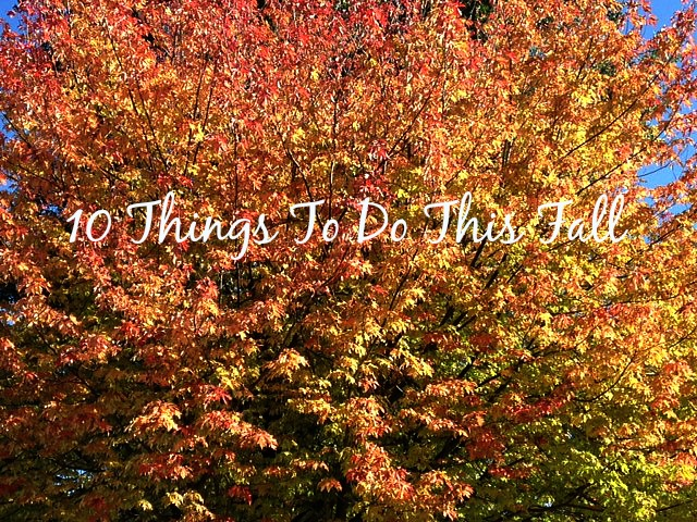 10 Things To Do This Fall